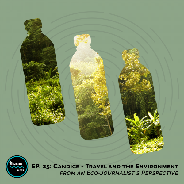 travel and the environment